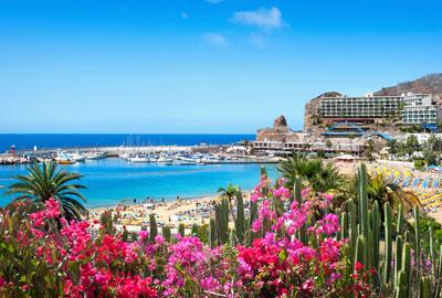 Traductor Jurado en Las Palmas de Gran Canaria